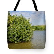 Mangrove Fores Tote Bag by Carol Ailles