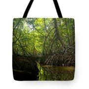mangrove forest in Costa Rica 1 Tote Bag