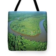 Mangrove Forest In Mahakam Delta Tote Bag by Cyril Ruoso
