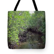 Mangrove Forest Tote Bag by Tony Murtagh