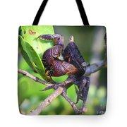Mangrove Tree Crab Tote Bag