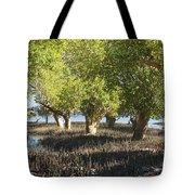 mangroves Madagascar 3 Tote Bag