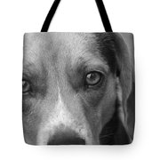 Man's Best Friend In Black And White Tote Bag