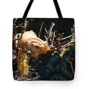 Mantids Hatch Tote Bag