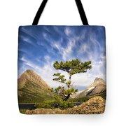 Many Glacier Tree Tote Bag
