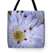 Many Ladybugs On White Daisy Tote Bag by Garry Gay