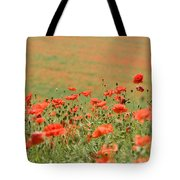 Many Poppies Tote Bag
