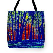 Many Trees II Tote Bag