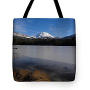 Manzanita Winter Beauty Tote Bag