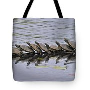 Map Turtles Tote Bag