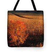 Maple And Cornfield At Dawn Tote Bag