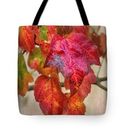 Maple Colors Tote Bag