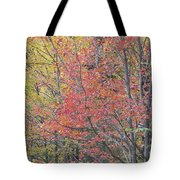 Maple Corner Foliage Tote Bag