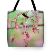 Maple Leaf Seed Pods   Tote Bag