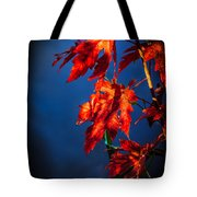 Maple Leaves Shadows Tote Bag