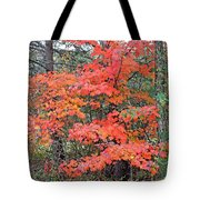 Maple Rush In The Fall Tote Bag
