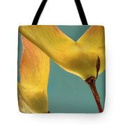 Maple Seed Pods Tote Bag