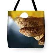 Maple Seeds 2 Tote Bag