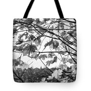 Maple Sunset - Paint Bw Tote Bag