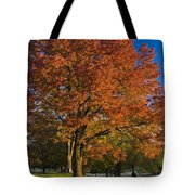 Maple Trees Tote Bag