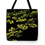 Maples Against Black Tote Bag