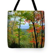 Maples Against Lake Superior - Tettegouche State Park Tote Bag