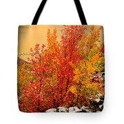 Maples Along The Palisades Tote Bag
