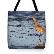 Marbled Godwit At Sunset Tote Bag