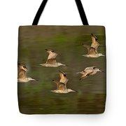 Marbled Godwit Flock Flying Tote Bag