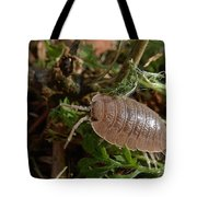 Marching On Tote Bag