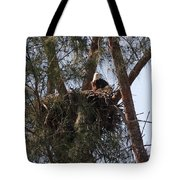 Marco Eagle - Protecting Its Nest Tote Bag