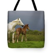 Mare And Foal, Co Derry, Ireland Tote Bag