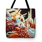 Marigold Petal Sem Tote Bag