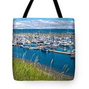 Marina Along Homer Spit-ak Tote Bag
