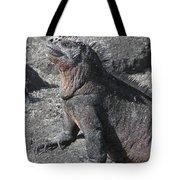 Marine Iguana  Amblyrhynchus Cristatus Tote Bag