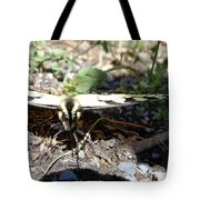 Mariposa Up Close Tote Bag