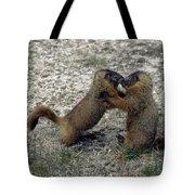 4m09150-02-marmot Fight Tote Bag
