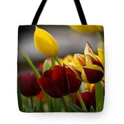 Maroon And Gold Tulips Tote Bag