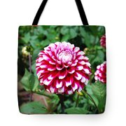 Maroon And White Flower Tote Bag