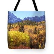 Maroon Bells Beauty Tote Bag