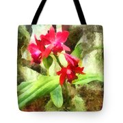 Maroon Cattleya Orchids Tote Bag