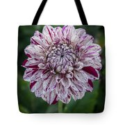 Maroon Speckled Dahlia Tote Bag