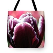 Maroon Standout Tote Bag