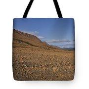 Mars On Earth Tote Bag