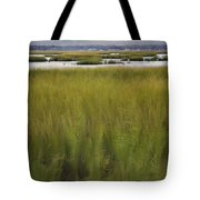 Marsh At Milford Point Tote Bag