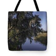 Marsh Creek Tote Bag