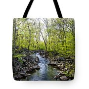 Marsh Creek In Spring Tote Bag