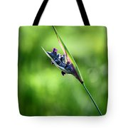 Marsh Flower Tote Bag