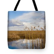 Marsh Reed Tote Bag