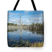 Marsh Reflections Tote Bag